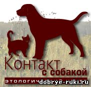 центр Контакт с собакой